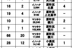 Still 102,900 Bq/Kg of Cs-134/137 measured from Matsutake mushroom in Minamisoma city