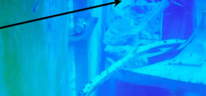 Fuel Handling Machine potentially opening the door of SFP3 to the reactor vessel