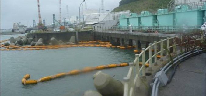The highest density of all β nuclide detected outside of Fukushima plant port