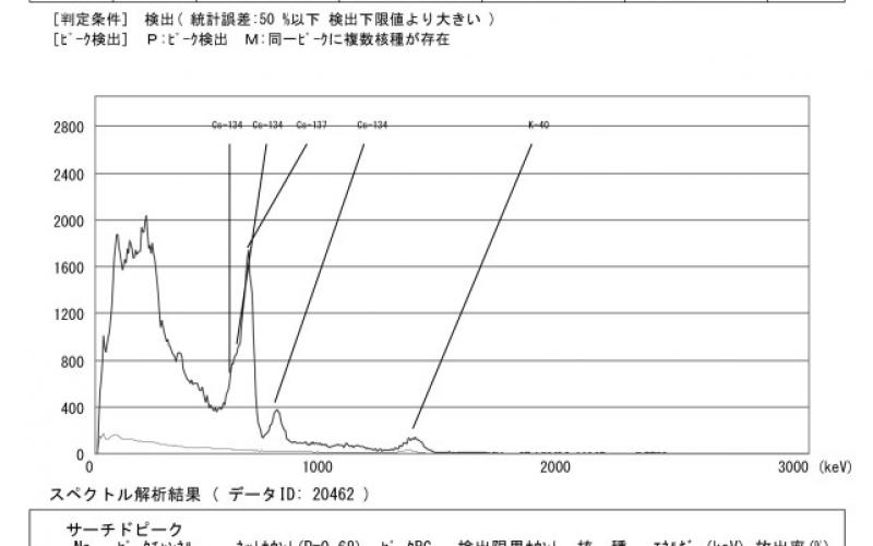 360 Bq/Kg detected from sand beside elementary school of Tokyo
