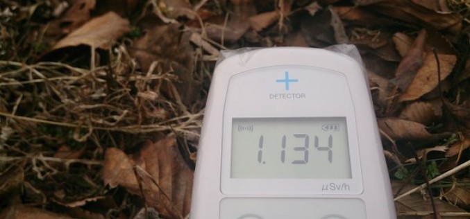 [Photo] Still over 1 μSv/h measured beside a rice field in Tochigi